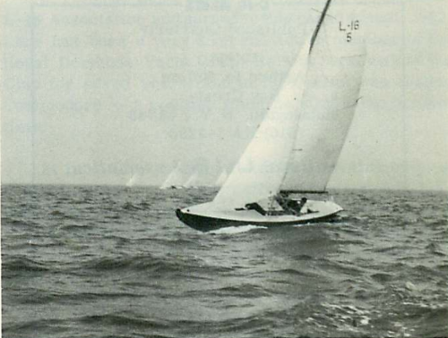 Cymbidium Luders 16 #5 - 1934